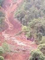 स्यांग्जामा पहिरोले पुरिएर १ जनाको मृत्यु भएको छ ,३ जना बेपत्ता।
